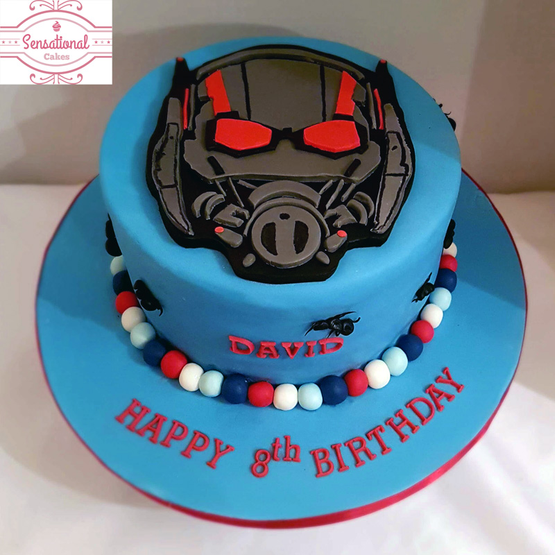 Sensational Ant Man Birthday Cake Sensational Cakes Funny Birthday Cards Online Inifofree Goldxyz